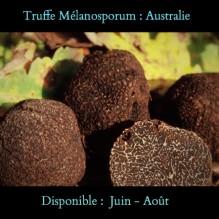 Truffe d'Australie: Melanosporum. Disponible sous réservation